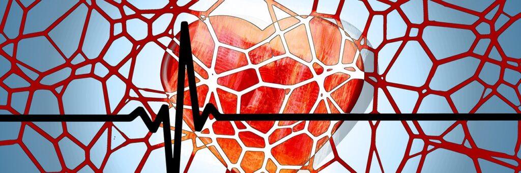 Prawidłowe ciśnienie krwi – warunek dobrego zdrowia i samopoczucia
