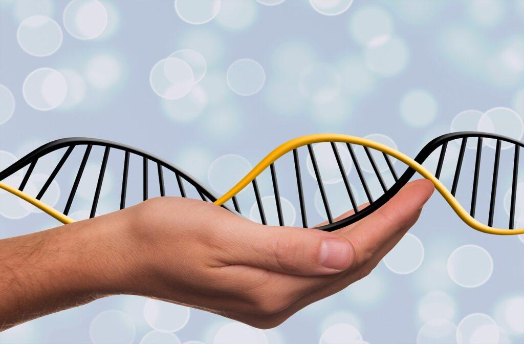 Jakie badania genetyczne wykrywają bezpłodność?